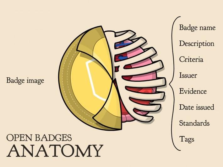 http://classhack.com/post/45364649211/open-badge-anatomy-updated
